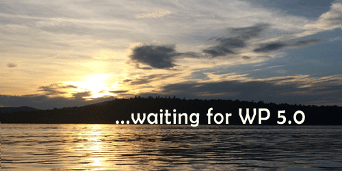waiting for wordpress 5.0